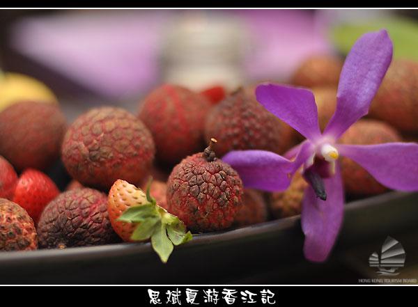 omy-hk_015.jpg